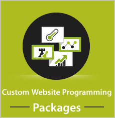 website programming packages