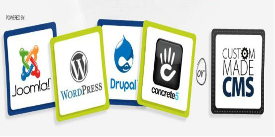 Top 10 Custom Web Development Companies List 2014 - 15