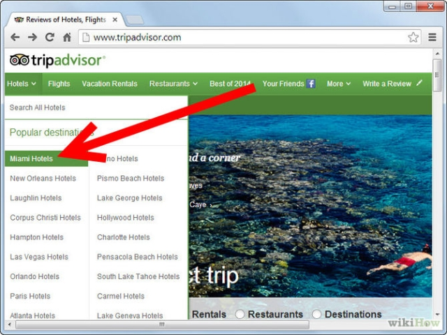 How to Write a Review on TripAdvisor
